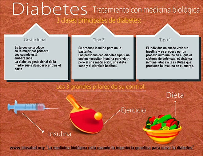 ingeniería genética y diabetes