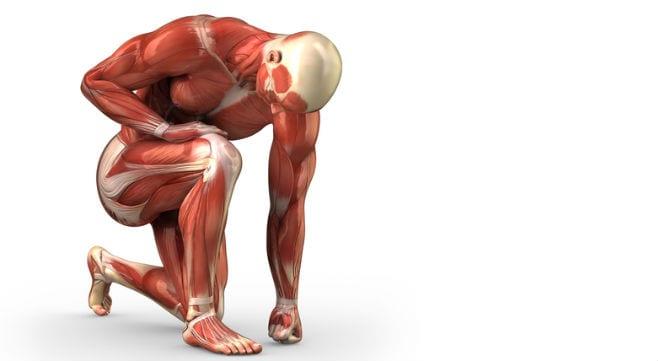 Enfermedades reumáticas y musculoesqueléticas