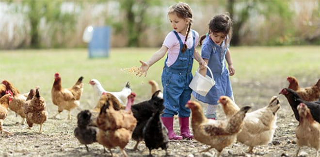 Alergias infantiles efecto granja