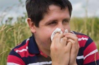 Alergias inhalatorias. Rinitis