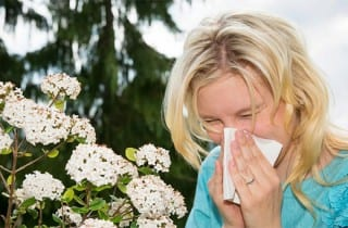 Alergias respiratorias, alergia al polen