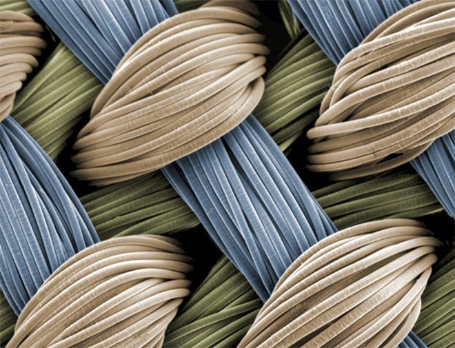 andamios de fibra cartilago