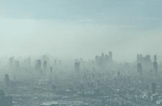 contaminación y mortalidad
