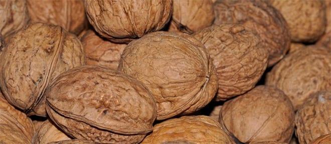 Alimentación enfermedades reumáticas nueces