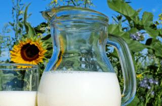 análisis alergia gluten y caseína