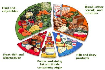 Los 5 grupos de alimentos fundamentales