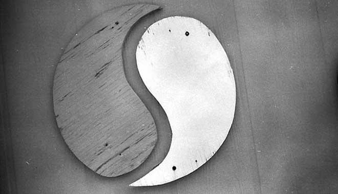 Medicina integrativa, yin y yang