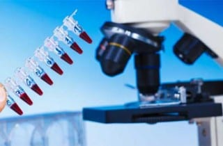 Medicina regenerativa, laboratorio