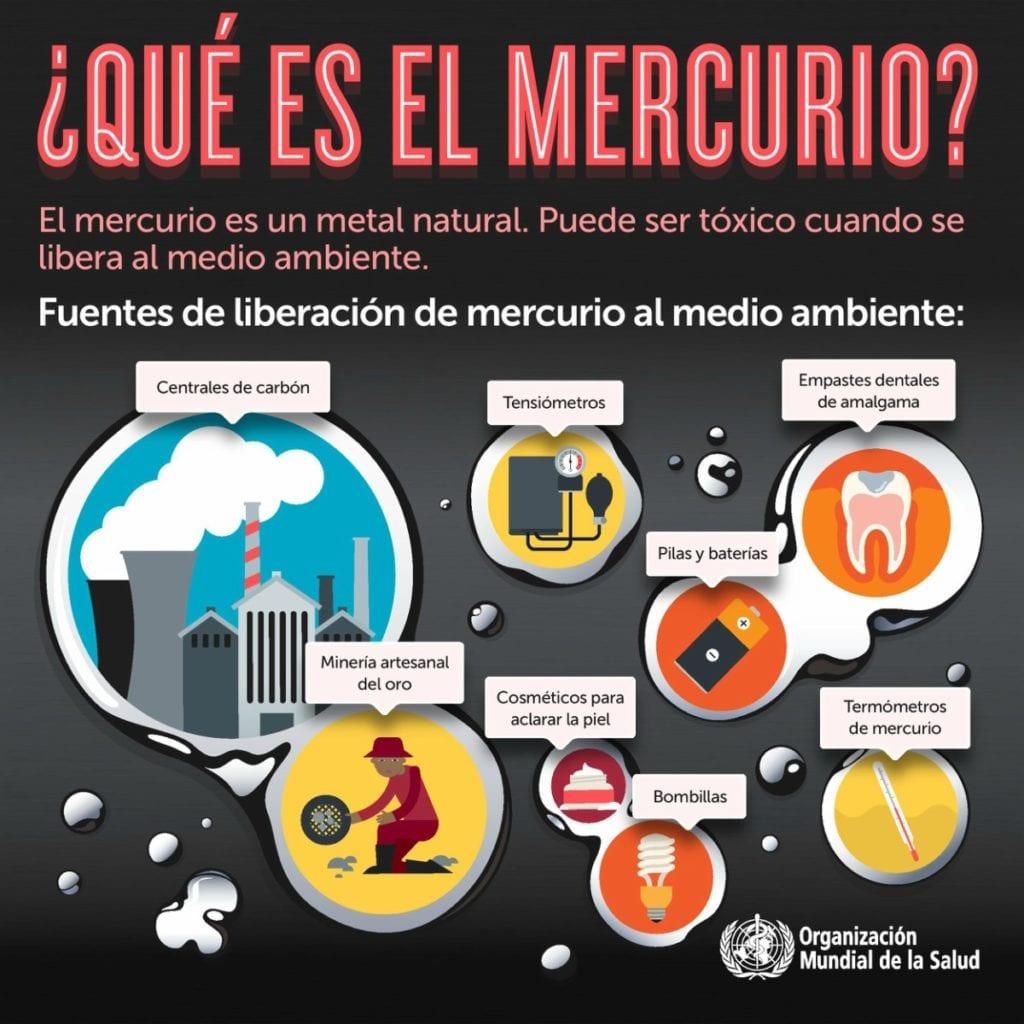 efectos del mercurio sobre la salud